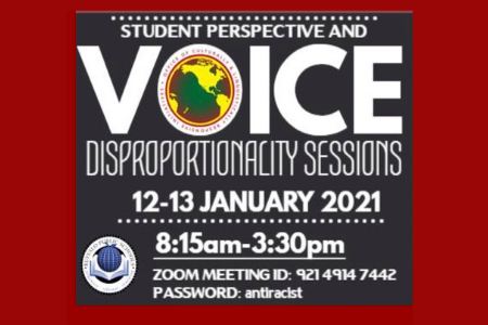 Disproportionality Sessions