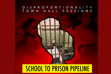 Disproportionality Town Hall Sessions